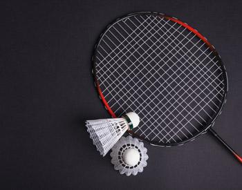 Badminton - Groupe Lavallée